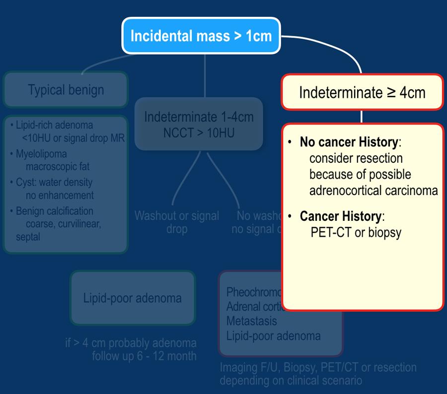 adenoma de próstata de connecticut