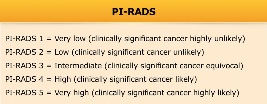 cáncer de próstata 1.5 mm 1