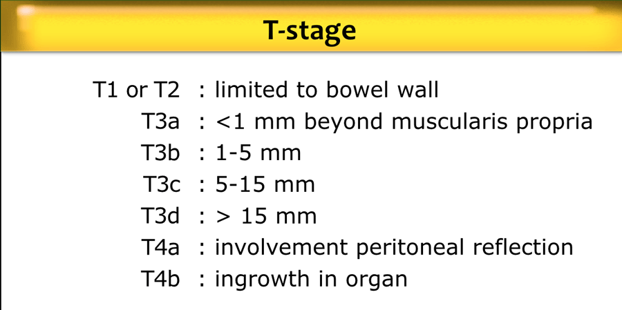 The Radiology Assistant Rectal Cancer Mr Staging