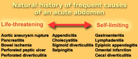 The Radiology Assistant Practical Approach To Acute Abdomen